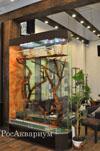 Фото большого террариума для крупной игуаны