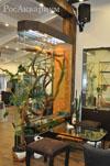 Террариум для взрослой игуаны фото