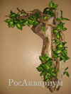 Фото коряги для террариума с игуаной
