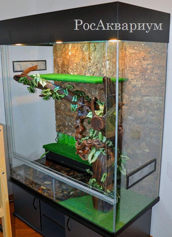 Террариум для зеленой игуаны своими руками 160